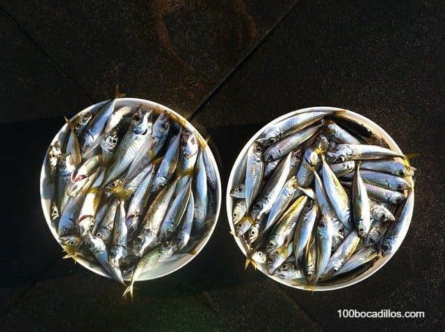 Como hacer un bocadillo de sardinas